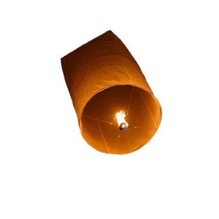 Tinymills Chinese Lanterns 10-pack White, Colorful Chinese Lanterns Biodegradable Paper Lanterns Multi-Color for Birthdays, Ceremonies, Weddings and More - Fish Paper Lanterns