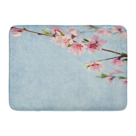 GODPOK Ancient Blue Aged Old with Peach Blossom Pink Aging Antique Rug Doormat Bath Mat 23.6x15.7 inch