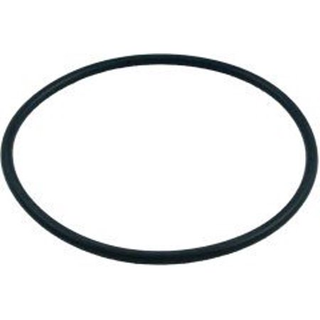 Pacfab Tagelus Sand Filter Body O-Ring for 1-1/2