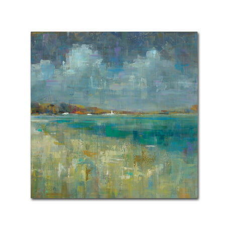 - Trademark Fine Art 'Sky and Sea Crop' Canvas Art by Danhui Nai