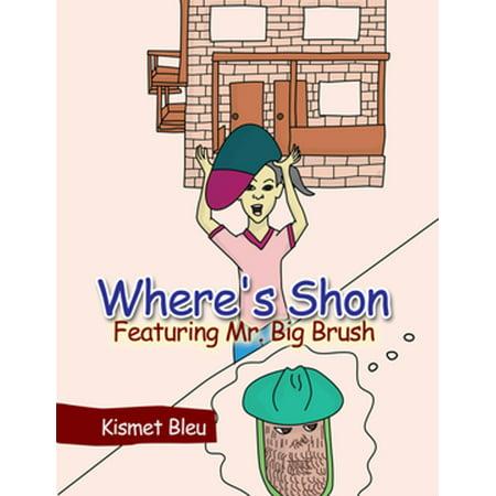Where's Shon Featuring Mr. Big Brush - eBook