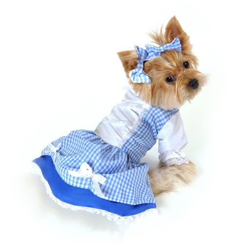 Anit Accessories Dorothy Dog Costume