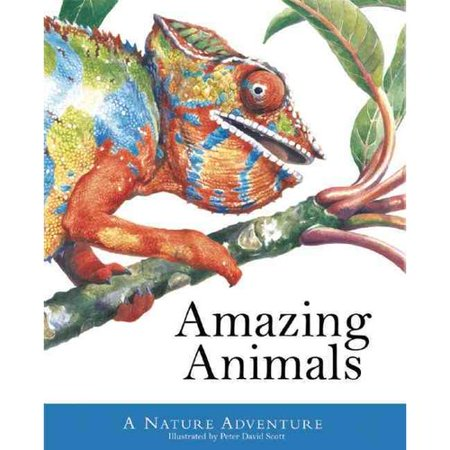 Amazing Animals by