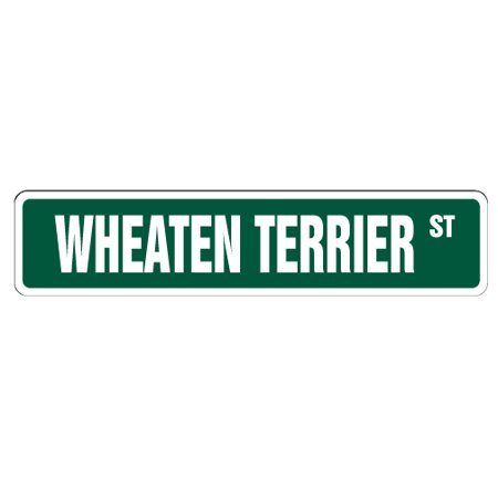 Wheaten Terrier Street [3 Pack] of Vinyl Decal Stickers | Indoor/Outdoor | Funny decoration for Laptop, Car, Garage , Bedroom, Offices | (Terrier Dog Vinyl Decal Sticker)