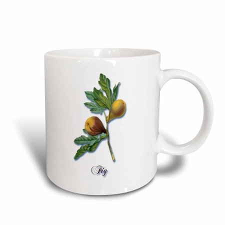 (3dRose Fig, Botanical Print of Fig Fruits on a Branch, Ceramic Mug, 11-ounce)