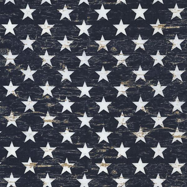 Timeless Treasures Fabrics Patriotic Novelty Fabric Navy Patriotic Stars
