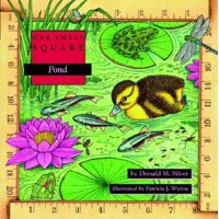 One Small Square: Pond (Paperback)