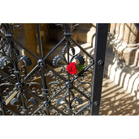 Herend Vienna Rose (Canvas Print Door St Stephan's Cathedral Rose Grid Goal Vienna Stretched Canvas 10 x 14 )