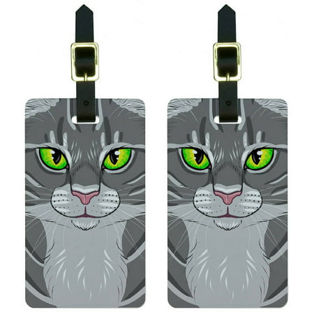 Gray Tabby Cat Face Pet Kitty Luggage Tags Suitcase Carry-On ID, Set of 2
