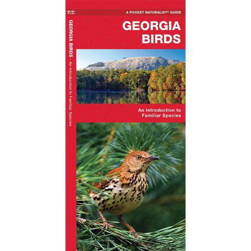 Georgia Birds: A Folding Pocket Guide to Familiar Species
