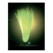 Aqua Plant Glo Lights Hair Grass Aquarium Plant