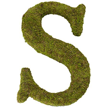 Moss Letter for Home Decor, 15-Inch, Monogrammed G, MENTIONED Moss 7Inch 05Ounce Black Math INDICATION Powder RECEIVE 5Inch Lace IMAGE Book.., By Lillian Rose Ship from US - Math Decorations