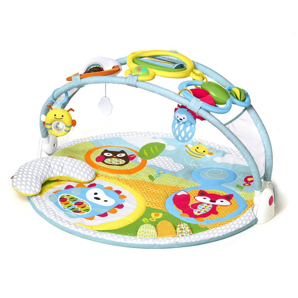 Skip Hop Explore & More Amazing Arch Activity Gym by Skip Hop