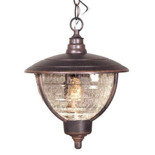 Special Lite Products Vista 1-Light Outdoor Hanging Lantern