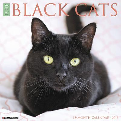 Just Black Cats 2019 Wall Calendar (Other)
