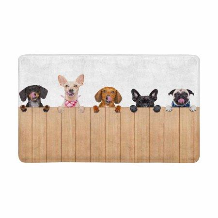 MKHERT Funny Different Puppy Dogs Behind a Blank Banner Doormat Rug Home Decor Floor Mat Bath Mat 30x18 inch