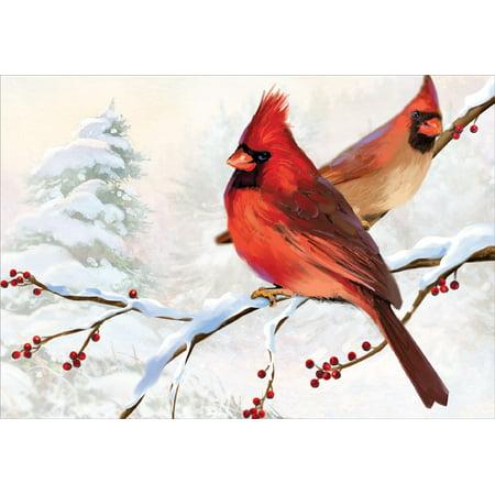 Christmas Cardinals Images.Designer Greetings Two Cardinals Christmas Card