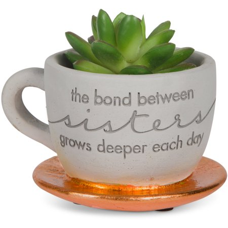 """Image of """"Pavilion Gift- """"""""The bond between sisters grows deeper each day"""""""" Copper Cement Teacup Planter with Faux Plant"""""""