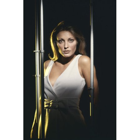 Sharon Tate sexy busty studio pose in low cut white dress 24x36 Poster (Sharon Tate Costume)