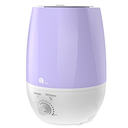 1byone 6L(1.59 Gallon) Ultrasonic Cool Mist Humidifier and Aroma Diffuser, No Noise & 7 Color LED Lights with Automatic Shut-off Function for Your Home and Office (Humidifier With Difuser)