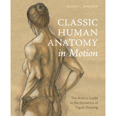 Classic Human Anatomy in Motion : The Artist's Guide to the Dynamics of Figure