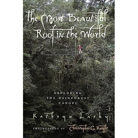 The Most Beautiful Roof in the World: Exploring the Rainforest Canopy (The Most Beautiful Eyebrows In The World)
