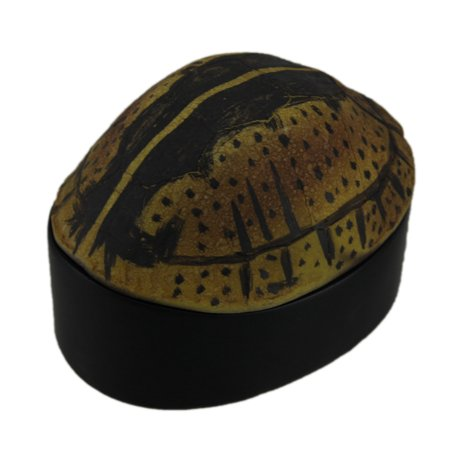 Desert Tortoise Shell Decorative Trinket Box