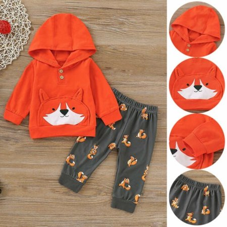Newborn Baby Girl Long Sleeve Top Hooded Pullover Long Pants Autumn Clothes Sets - image 1 of 5