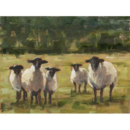 Sheep Family I Farm Animal Country Landscape Print Wall Art By Ethan