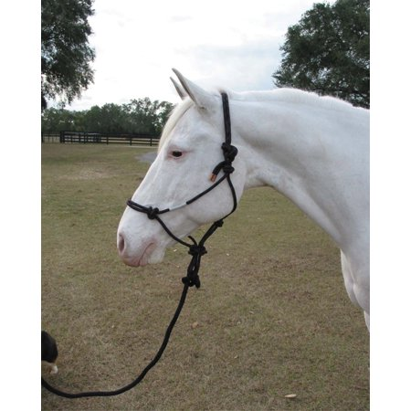 ADULT HORSE ROPE HALTER WITH LEAD