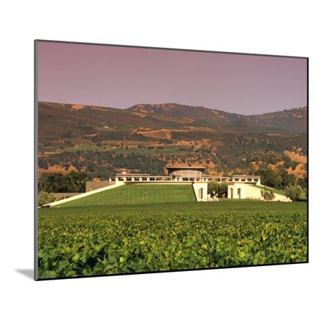 Opus One Winery, Napa Valley, California Wood Mounted Print Wall Art By John Alves (Opus One Winery)