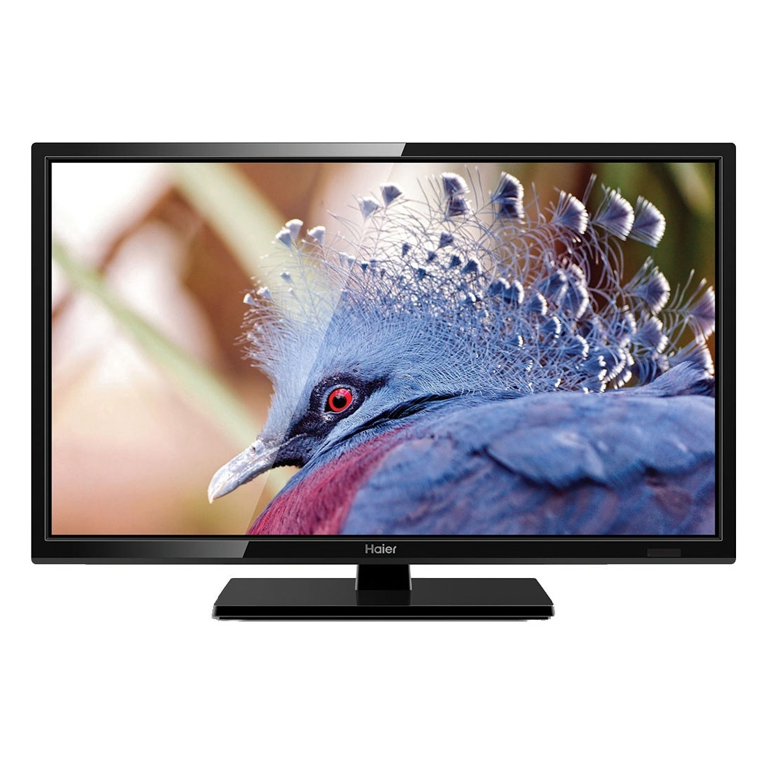 "Haier E2000 24e2000 24"" 720p Led-lcd Tv - 16:9 - Black - ..."