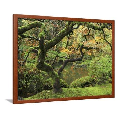 Portland Japanese Garden in Early Autumn: Portland Japanese Garden ...