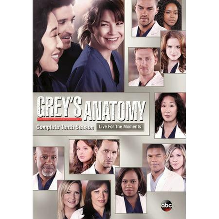 Greys Anatomy 10Th Season  Dvd 6 Disc   Buena Vista