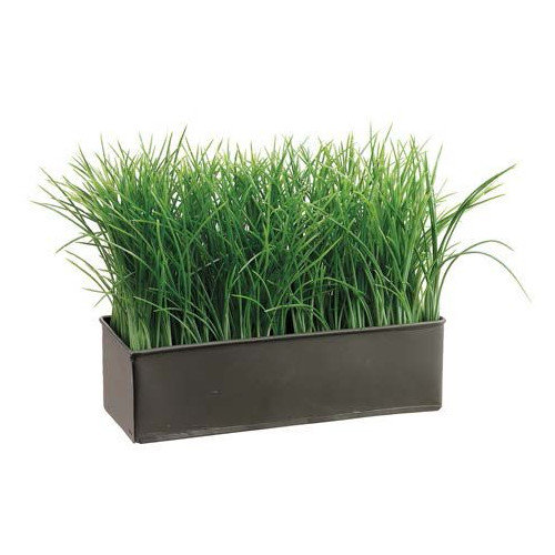 Tori Home Grass in Rectangular Metal Planter