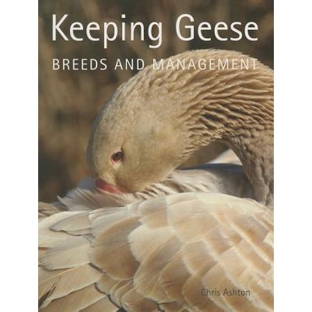 Keeping Geese : Breeds and Management