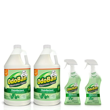 OdoBan Disinfectant Odor Eliminator Ready-to-Use 32oz Spray Bottle 2-Pack and 2 Gal Concentrate, Original Eucalyptus Scent