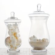 """BalsaCircle 2 pcs 10"""" 12"""" tall Clear Glass Apothecary Jars with Lids - Wedding Party Event Candy Gift Packaging Decorations Supplies"""
