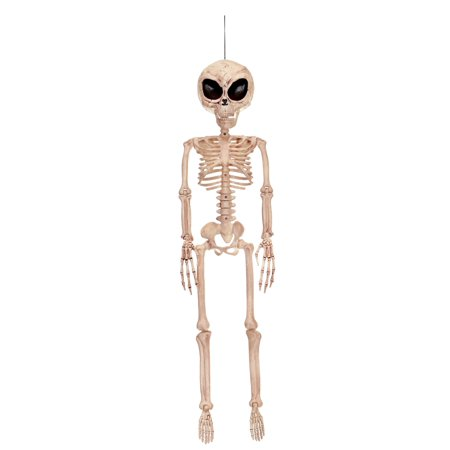 Alien Skeleton Halloween Decoration - Cute Halloween Skeleton Sayings