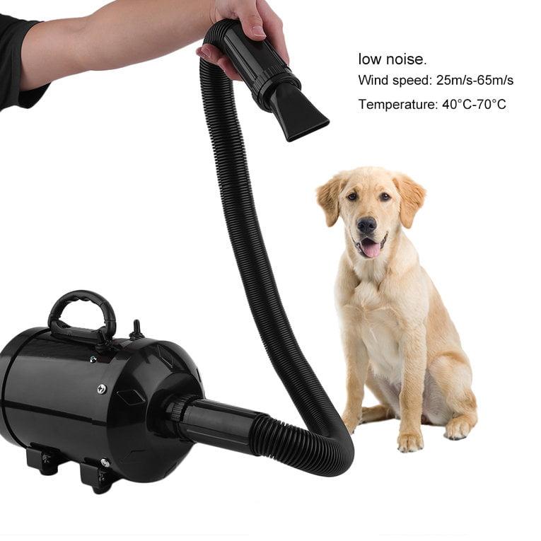 Strong Power Motor Low Noise Convenient Handle Pet Dryer ...