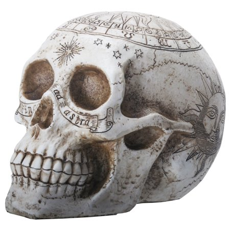 Carved Design Astrology Symbols Human Skull Head Halloween Figurine Decoration