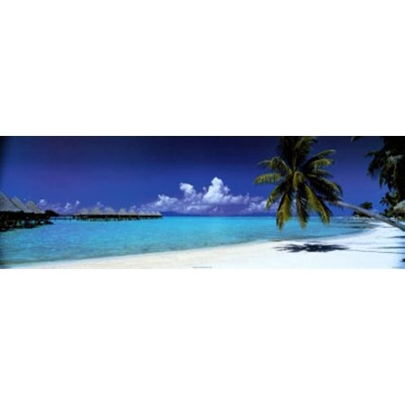 Palm Island Retreat Poster - 36x12