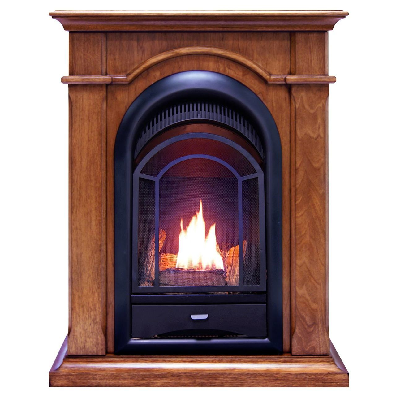 ProCom FS100T-AS Ventless Fireplace System 10K BTU Duel Fuel Thermostat Insert and Apple Spice... by