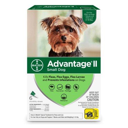 Advantage Flea Treatment (Advantage II Flea Treatment for Small Dogs, 6 Monthly)