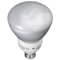 GE Lighting 15W, R30 Screw-In Fluorescent Light Bulb, FLE15/2DMR30/BX