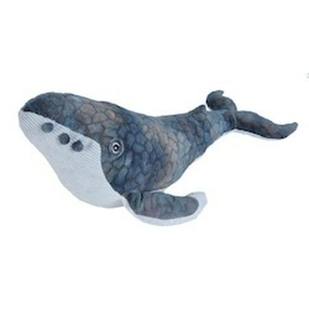 Cuddlekins Humpback Whale Plush Stuffed Animal by Wild Republic, Kid Gifts, Ocean Animals, 12 Inches (Wild Republic Humpback Whale)