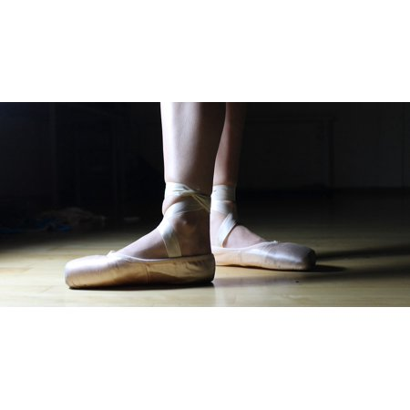 Laminated Poster Ballet Performance Ballet Shoes Dance Ballerina Poster Print 24 X 36