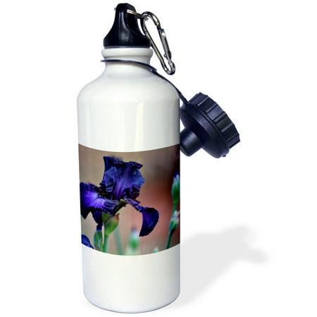 3Drose Purple Iris Royalty Is A Rich Deep Purple Garden Iris Flower  Sports Water Bottle  21Oz