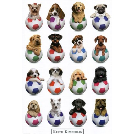 Puppy - Sports Poster Print - Puppy Posters
