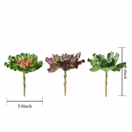 BalsaCircle 3 pcs 6-Inch Assorted Artificial Faux Succulent Picks Echeveria Rosettes Stems Wedding Tabletop Centerpieces Decorations ()